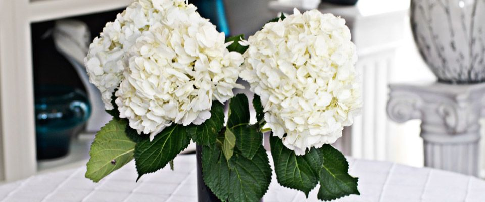 Wedding Floral - Wedding Flowers